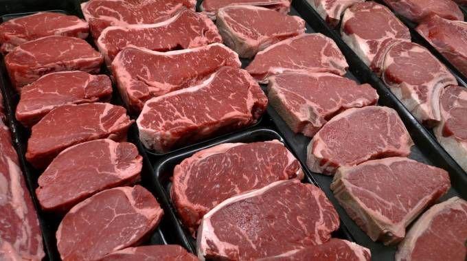 Carne (Ansa)