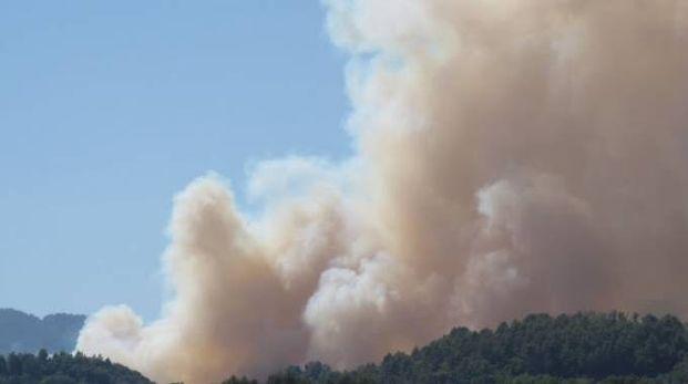 Incendio in un bosco (foto repertorio)
