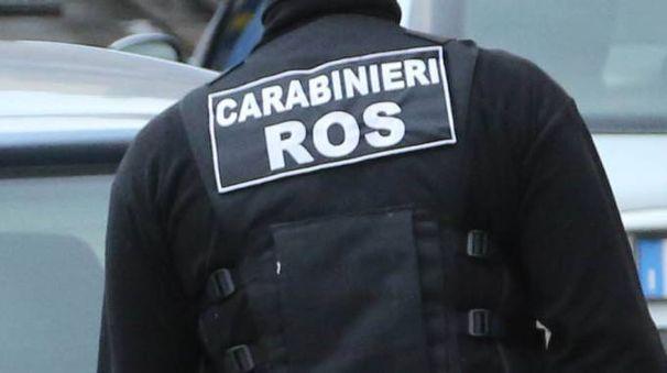 Ros (Foto d'archivio)