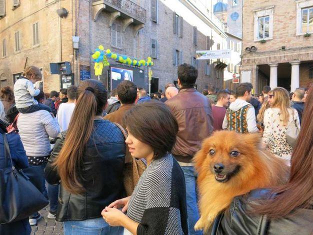 Anche il cagnolino in piazza (Foto di Tiziano Mancini)