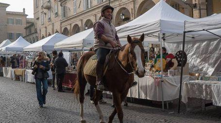 Un partecipante alla 'corsa dei cornuti' (Foto Zeppilli)