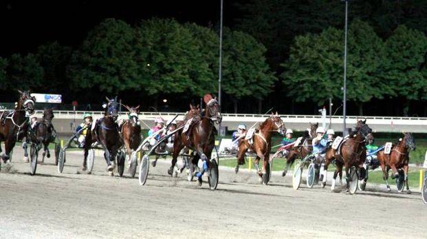 L'ippodromo di Cesena durante una gara