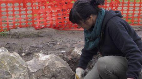 L'uni, presentato il progetto di restiling del museo archeologico