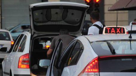 Taxi a  Bologna (foto Schicchi)