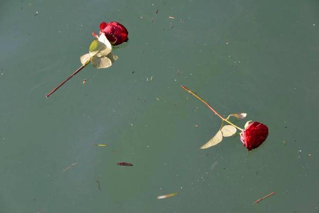 Il lancio dei fiori in mare