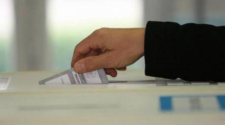 Elezioni rettore