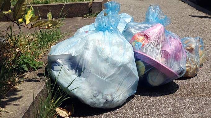 Sacchetti della spazzatura abbandonati (foto di repertorio)