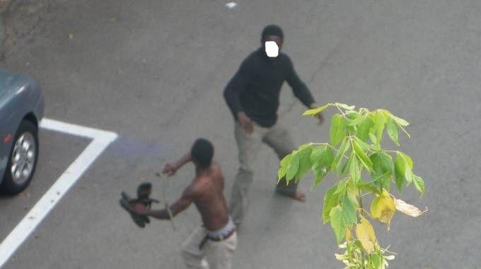 Una zuffa tra stranieri in strada