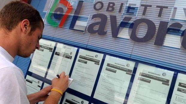 Banco Da Lavoro Per Elettricisti : Offerte di lavoro anche gli enti pubblici cercano collaboratori