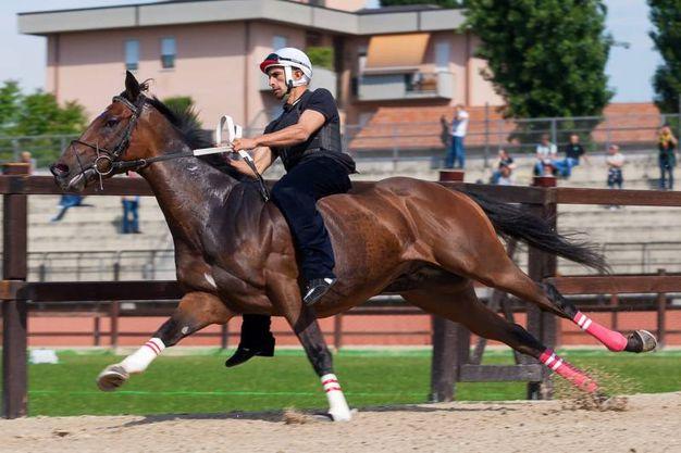 Cavalli e fantini provano la pista (Studiosally)