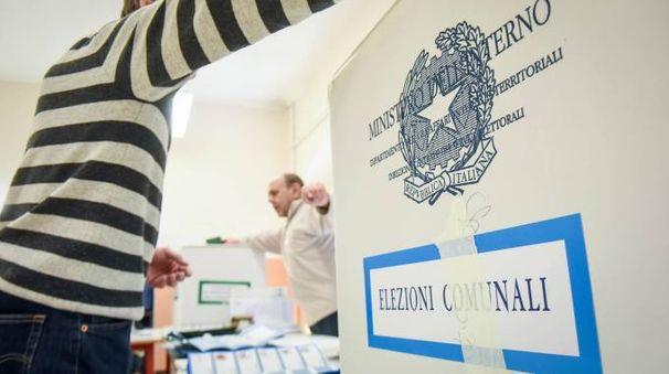 Elezioni comunali (Newpress)