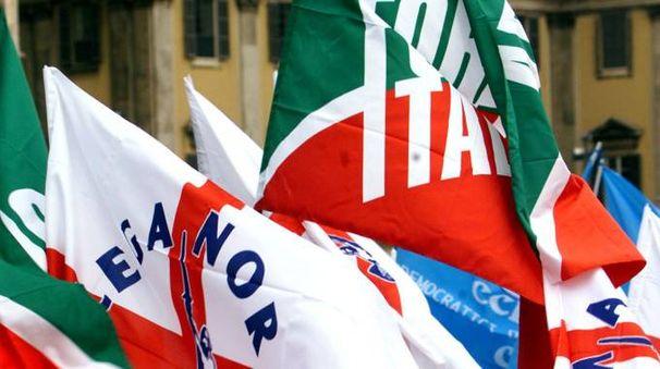 Bandiere di Lega e Forza Italia (Ansa)