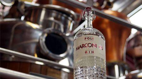 Marconi 43 (Foto: Poli Distillerie)