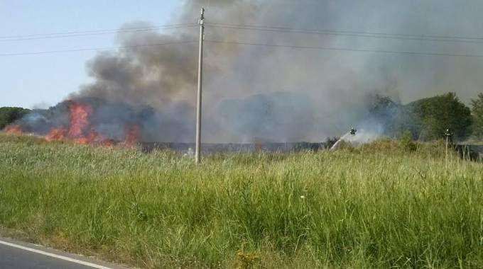 Le fiamme  lungo la via Castiglionese, vicino al centro quadrupedi dell'esercito (Foto Aprili)