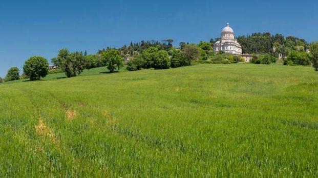 La campagna attorno a Todi, Umbria - foto Prisma Bildagentur AG / Alamy