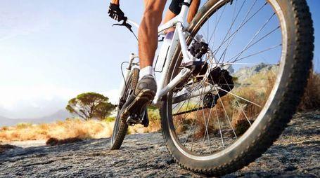 Una mountain bike (Foto d'archivio)