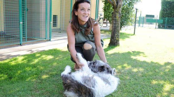 Il cane Boff con una volontaria del canile