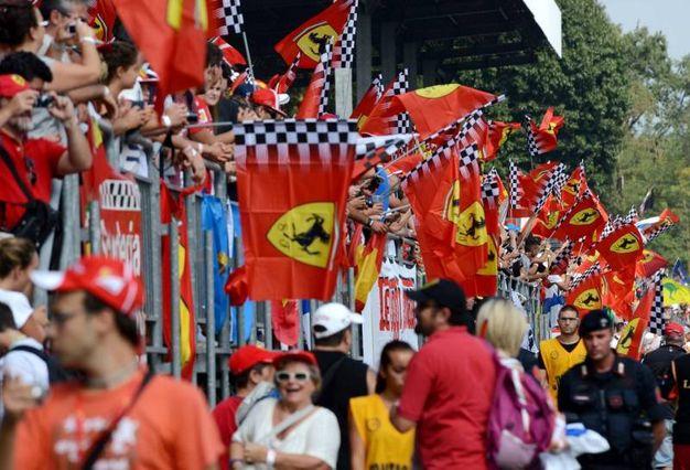 Bandiere ed entusiasmo per i tifosi della Ferrari (Radaelli)