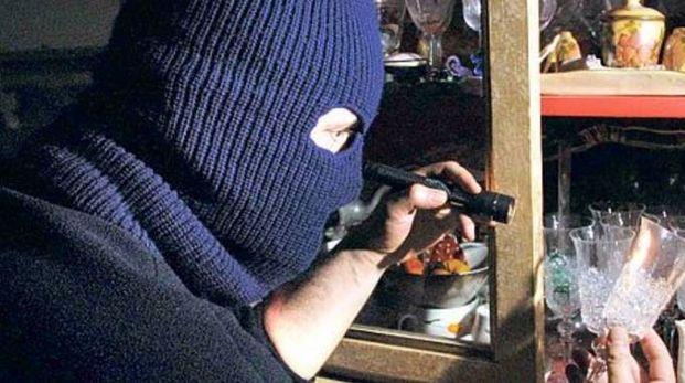 Ladri in azione(Foto archivio)