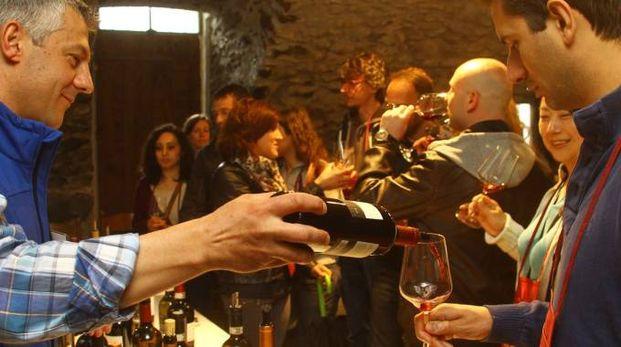 Degustazione di vini in enoteca (Foto d'archivio)