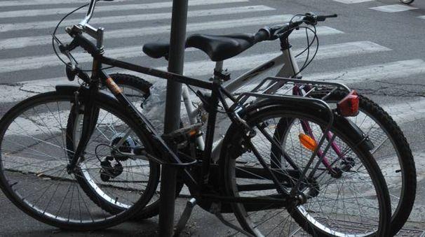 Bicicletta a Bologna (foto Schicchi)