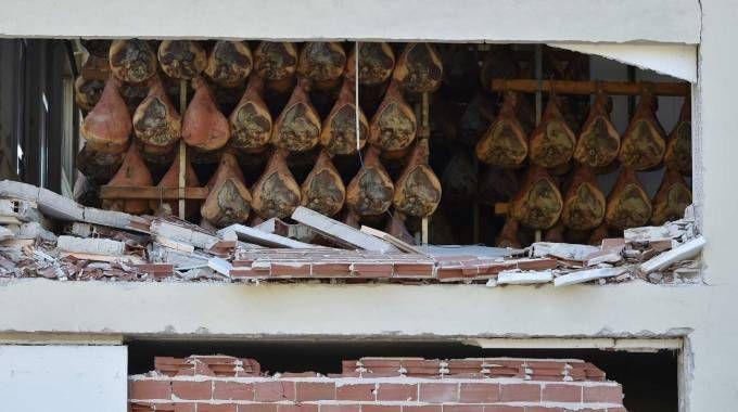 Terremoto Norcia, i danni a un'azienda che produce prosciutto (Afp)