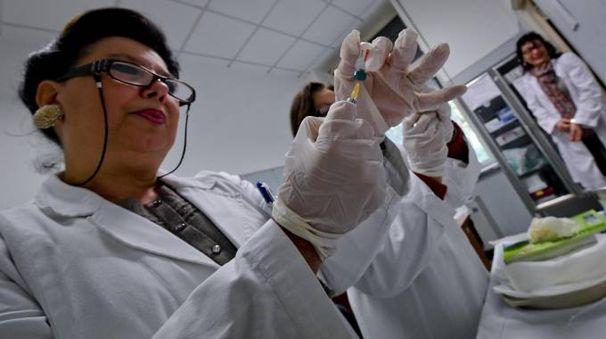 Vaccino anti influenzale (Ansa)