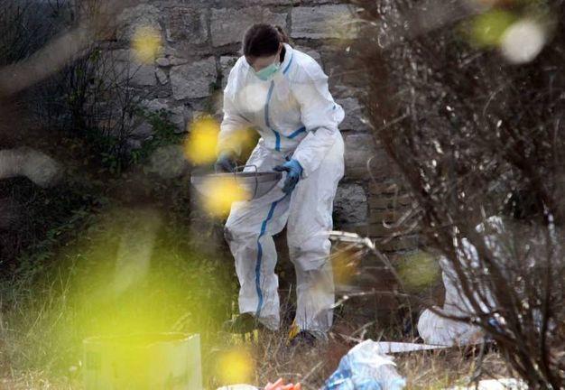 Carabinieri e Ris al lavoro sul luogo del ritrovamento delle ossa umane (Foto Labolognese)