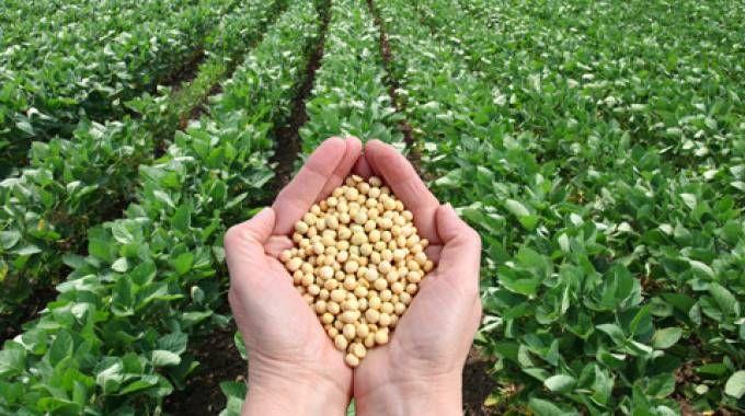 Premio Bologna per la sostenibilità agroalimentare