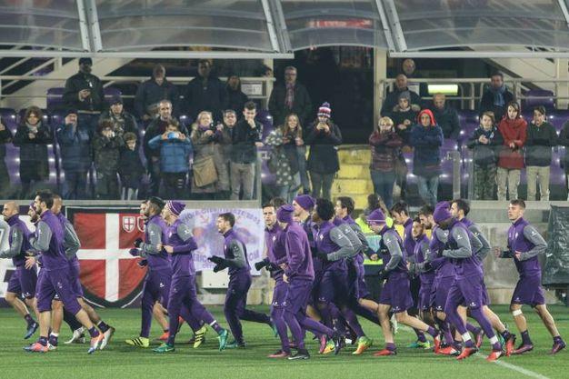 Allenamento Fiorentina Acquista