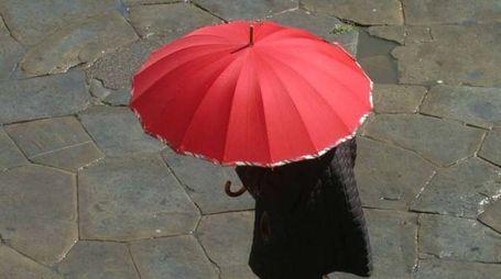 Pioggia (Tavanti)