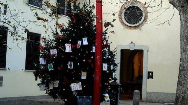 L'albero di Natale allestito dai negozianti