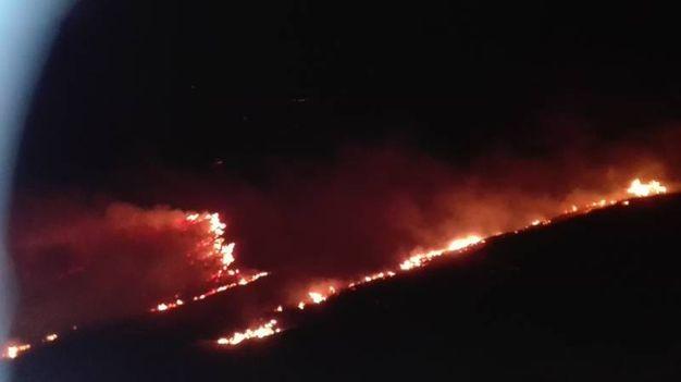 Le fiamme sono divampate nella notte