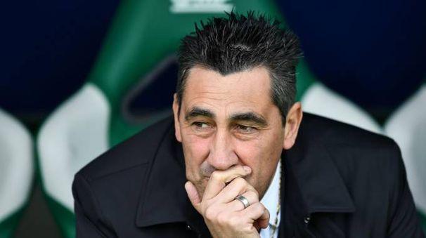 Alfredo Aglietti, allenatore Ascoli