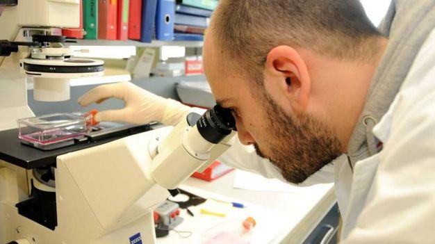 8- Il virus in Italia