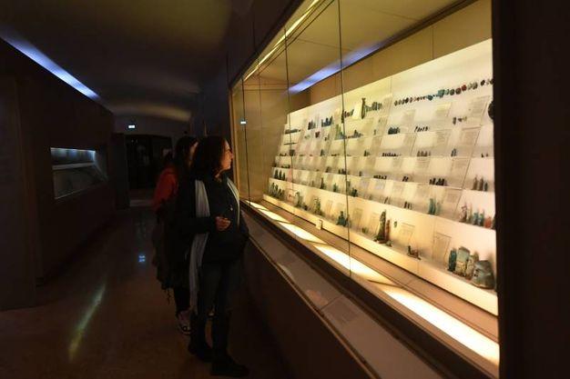 Arte Fiera, anche il museo Medievale all'insegna della White night: (foto Schicchi)