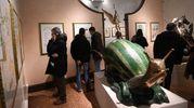 Una delle opere esposte a Palazzo Belloni per la mostra dedicata a Dalì (foto Schicchi)