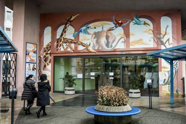 Ospedale dei Bambini Vittore Buzzi, inaugurato il 'Bosco incantato'