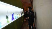 Le sculture in vetro (Foto Schicchi)