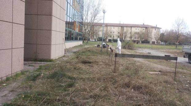 Uno scorcio delle aree esterne del Palazzo degli Specchi finalmente ripulite da parte dei rifiuti e delle erbacce