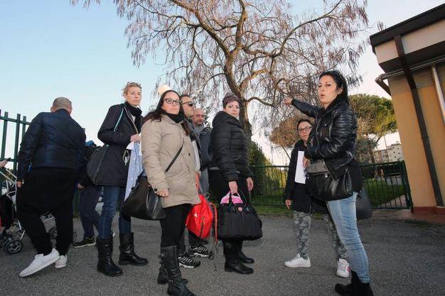 Topi nel giardino della scuola materna Pio Fedi (Marco Mori/New Press Photo)