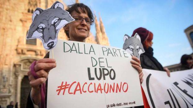 Flash mob per salvare i lupi in pizza Duomo a Milano