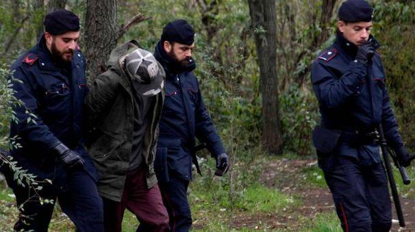 Operazione dei carabinieri nel boschetto di Rogoredo (foto repertorio)