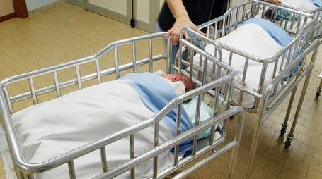 Neonati in ospedale in una foto d'archivio Germogli