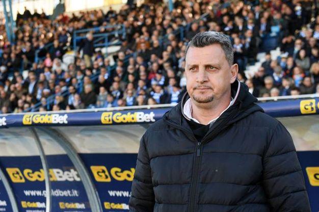 Mister Camplone osserva preoccupato la partita (foto LaPresse)