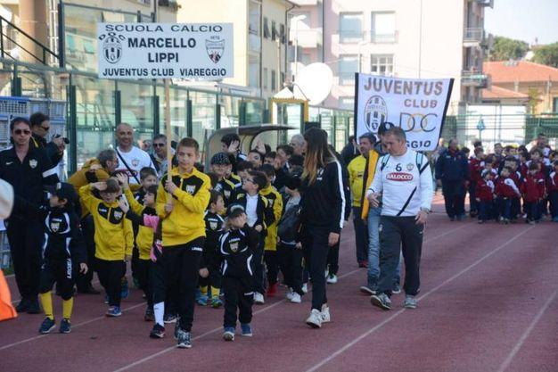 Foto Umicini
