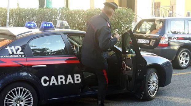 I carabinieri della Compagnia di Sarzana al lavoro per identificare l'aggressore di sabato notte