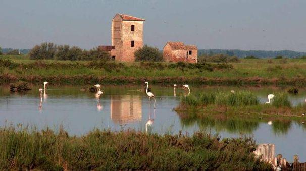 La Torre Rossa nella Salina di Comacchio, in provincia di Ferrara