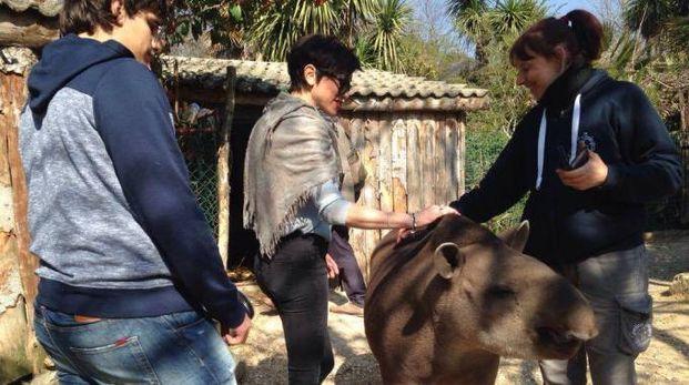 Valerio e Rubina allo zoo