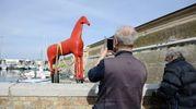 Il cavallo della Mole è in vetroresina dipinto di rosso (foto Emma)